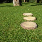 Stepping Stones log effect 1
